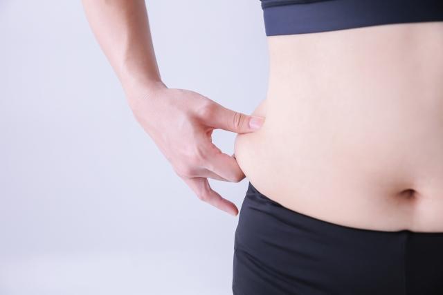 方 内臓 脂肪 落とし 内臓脂肪を効果的に落とす方法【筋トレ・呼吸法・運動】