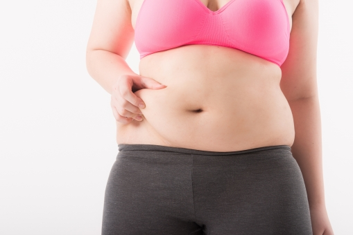 太っている女性,画像